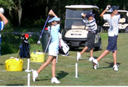 bloomingdale-golfing-cat-13